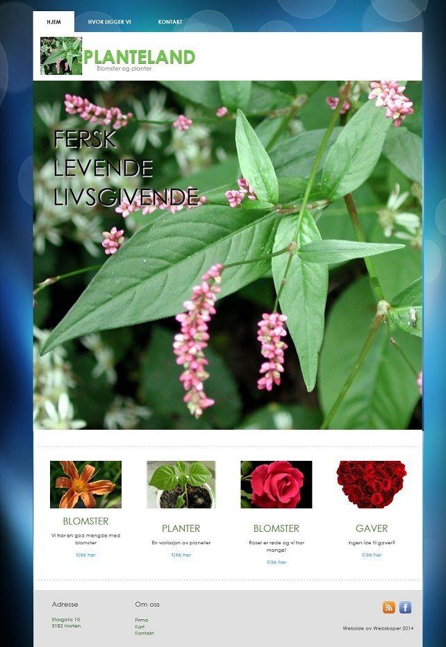 Flowershop webdesign